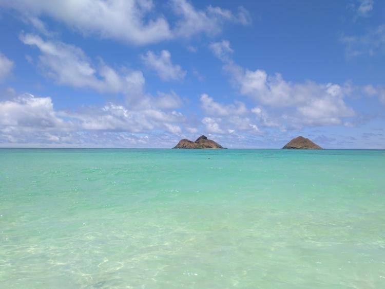 Honolulu - Cosmetic Composition